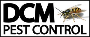 brighton wasp control